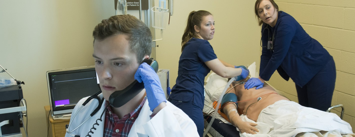 Students at work in the Simulation Hospital