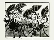 """Ants Go Marchin'"" by Jorge Luis Rivera"