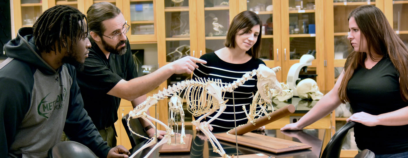Dr. Scott Robertson works with students in the Zoology lab.