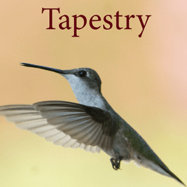 tapestry submissions open